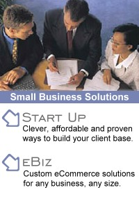 Internet Solutions for Business